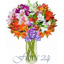 Доставка цветов город луганск купить цветы упаковками